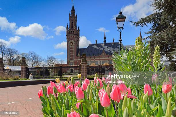 exterior of the hague's peace palace - andrew carnegie stock pictures, royalty-free photos & images