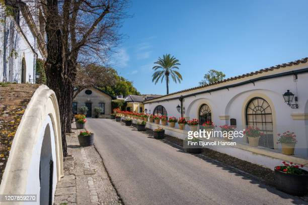 exterior scene of bodega gonzalez byass tio pepe - finn bjurvoll stock pictures, royalty-free photos & images