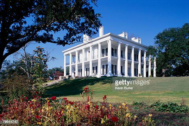 exterior view of dunleith plantation house and inn in natchez, mississippi - antebellum stock photos and pictures
