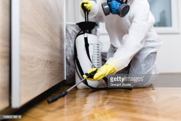 exterminator working - pest stock photos and pictures