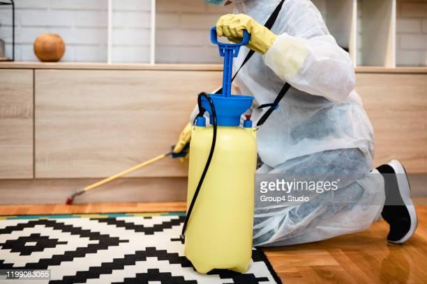 exterminateur de travail - termite photos et images de collection