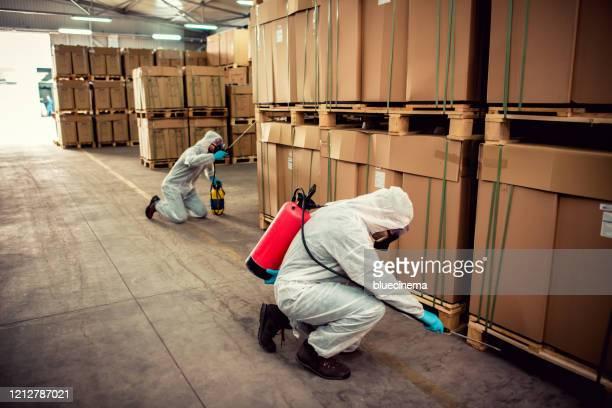 exterminateurs dans l'entrepôt pulvérisant des pesticides avec pulvérisateur - termite photos et images de collection