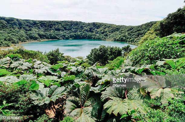 extinct volcanic crater lake botos, poas volcano, costa rica - ogphoto stock pictures, royalty-free photos & images