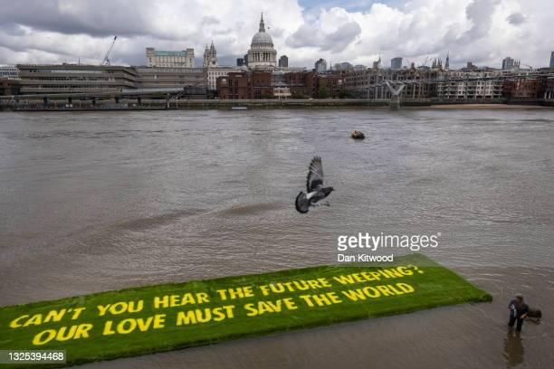 Extinction Rebellion activists unfurl a grass banner in the River Thames on June 25, 2021 in London, England. The Banner was floated on the Thames,...