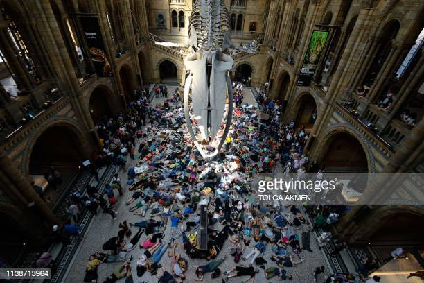 Extinction Rebellion climate change activists perform a mass 'die in' under the blue whale in the foyer of the Natural History Museum in London on...