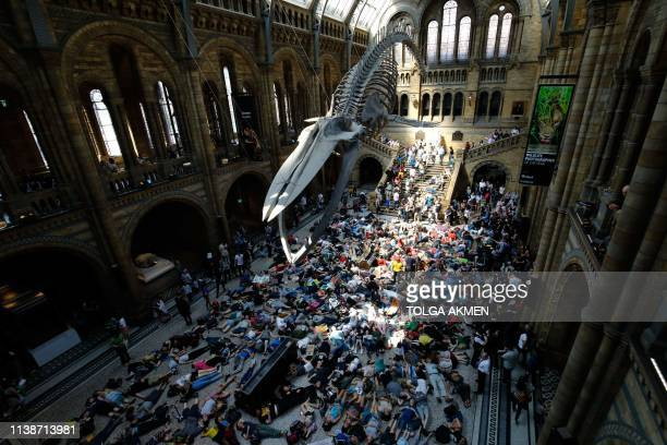 Extinction Rebellion climate change activists perform a mass die in under the blue whale in the foyer of the Natural History Museum in London on...