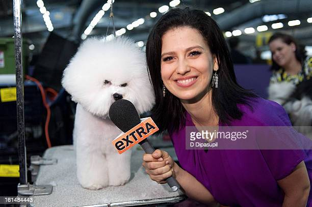 "Extra"" lifestyle correspondent Hilaria Baldwin visits The 137th Annual Westminster Kennel Club Dog Show at Pier 94 on February 11, 2013 in New York..."