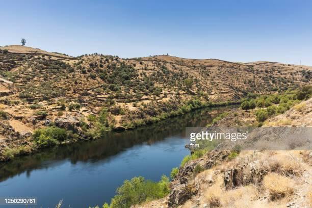 extremadura landscape with tagus river (spain) - extremadura fotografías e imágenes de stock
