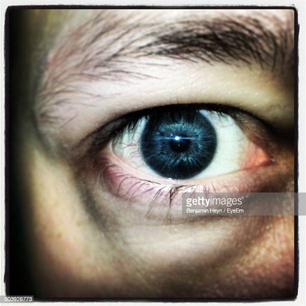 extreme close up of human eye - gray eyes stock pictures, royalty-free photos & images