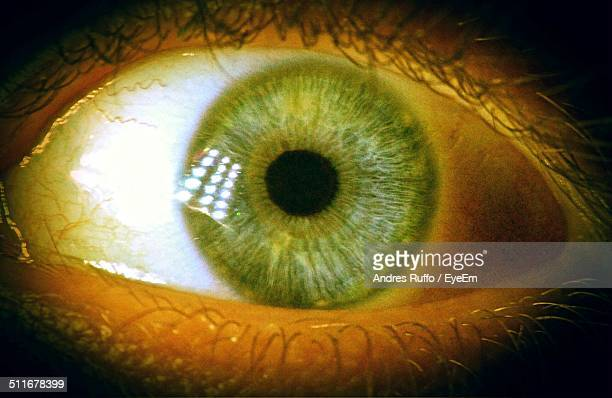 extreme close up of human eye - andres ruffo stock photos and pictures