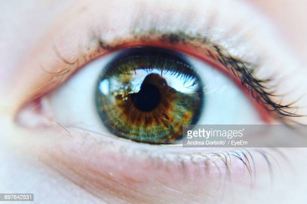 Extreme Close Up Of Human Eye