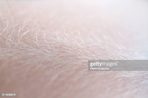 extreme close up skin - human skin stock pictures, royalty-free photos & images