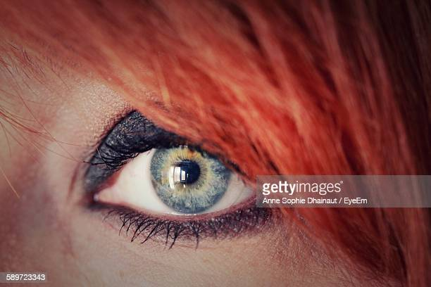 extreme close-up of eye - grey eyes stock pictures, royalty-free photos & images