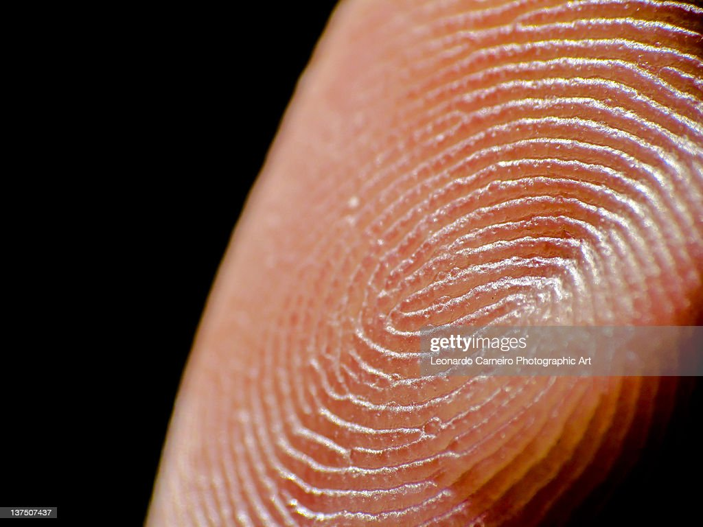 Extreme closeup of finger prints : Stock Photo