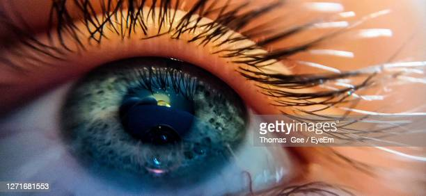 extreme close-up of human eye - eye stock pictures, royalty-free photos & images