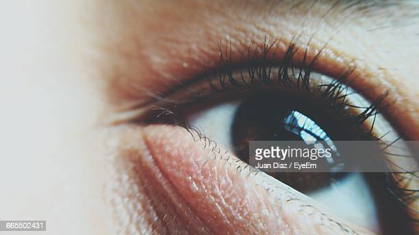Extreme Close-Up Of Human Eye
