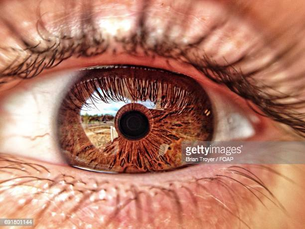 extreme close-up of human eye - human eye stock pictures, royalty-free photos & images