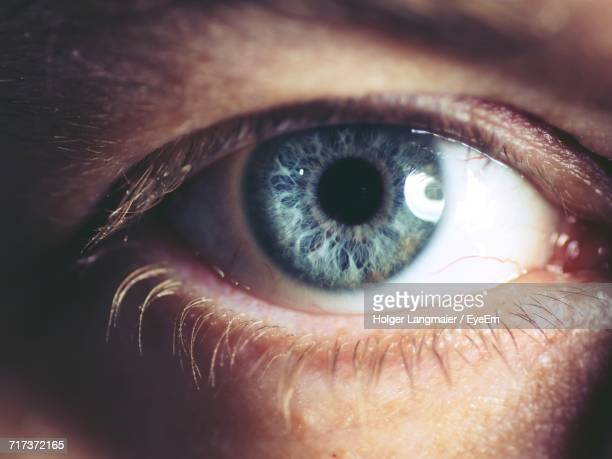 extreme close-up of human eye - yeux bleus photos et images de collection