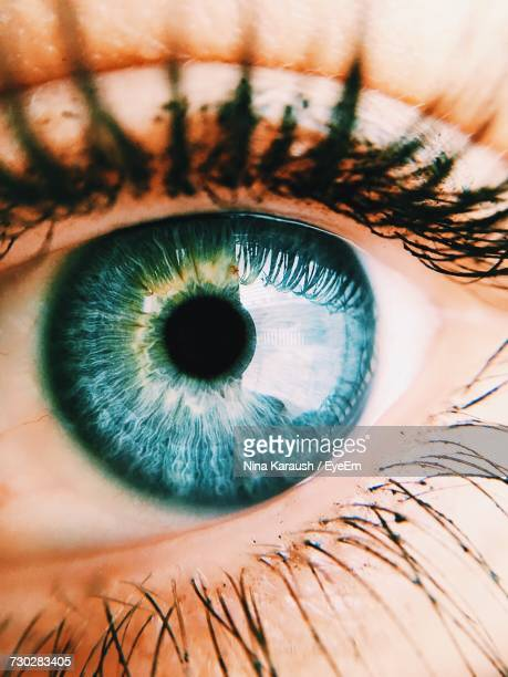 extreme close-up of human eye - blue eyes stock pictures, royalty-free photos & images