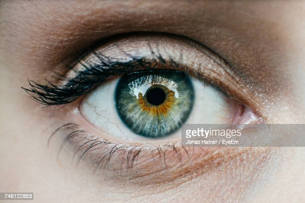 extreme close-up of human eye - close up stockfoto's en -beelden