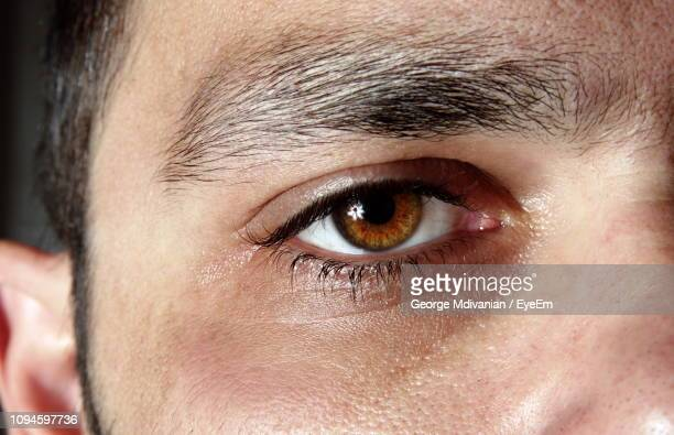 extreme close-up of man eye - brown eyes stock pictures, royalty-free photos & images