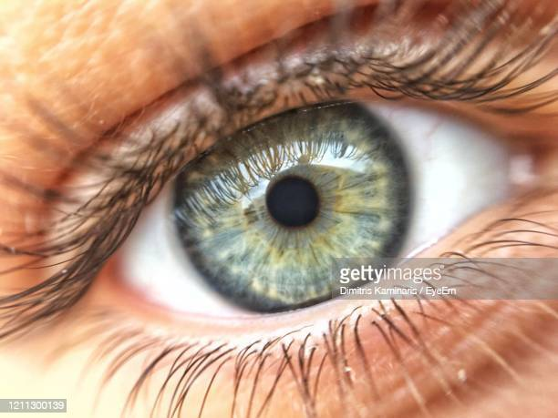 extreme close-up of man eye - volos stock pictures, royalty-free photos & images