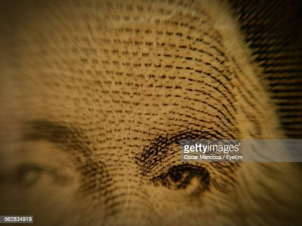 Extreme Close-Up Of One Dollar Bill-Washington Us Paper Currency
