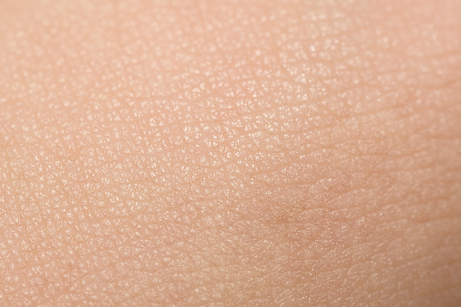 Extreme Close-Up Of Tanned Skin On Male Hand 1010039320