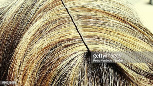 Extreme Close-Up Of Woman Blond Hair