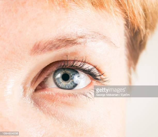 extreme close-up of woman eye - adults only stock pictures, royalty-free photos & images