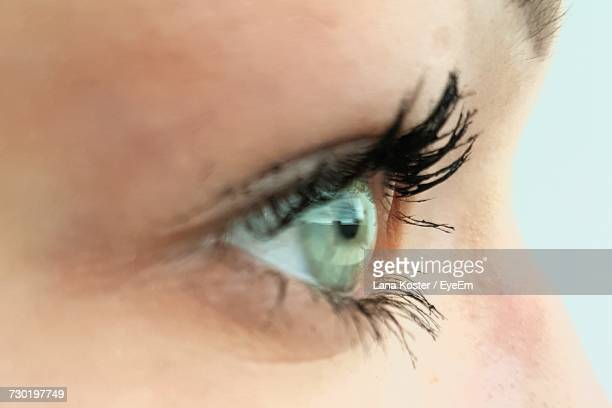 Extreme Close-Up Of Woman Eye With Mascara