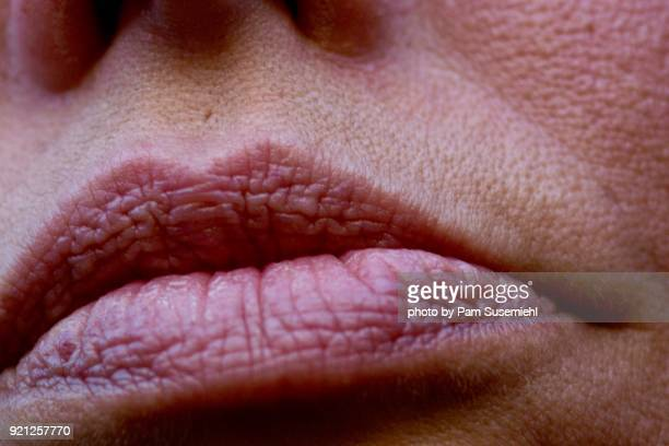 extreme close-up woman's closed mouth - pores stock photos and pictures
