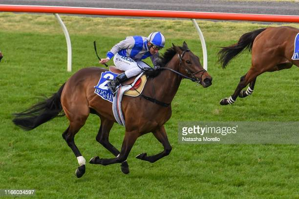 Extreme Pride ridden by Damien Oliver wins the Lloyd Sound Fillies and Mares BM58 Handicap at Seymour Racecourse on September 05 2019 in Seymour...