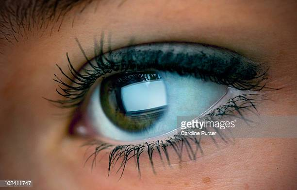 eye close up with blank computer screen reflection - green eyes stock pictures, royalty-free photos & images