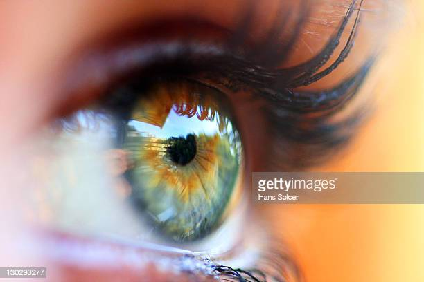 eye, close-up - green eyes stock pictures, royalty-free photos & images