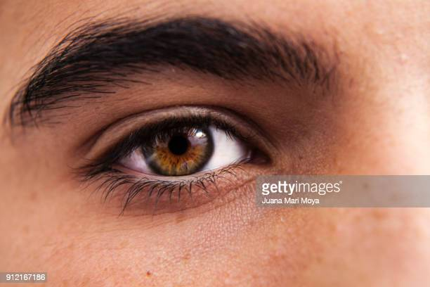 eye of teenager - light brown eyes stock photos and pictures