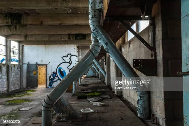 eye on the door - nederzettingen stockfoto's en -beelden