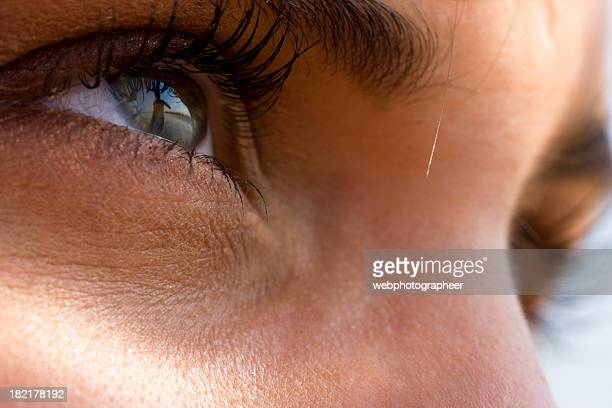 目を - 先頭 ストックフォトと画像