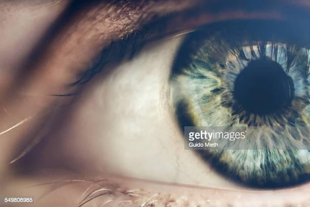 eye. - sinneswahrnehmung stock-fotos und bilder