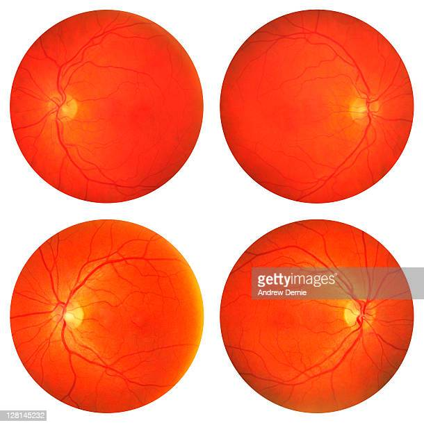 eye scans - retinal scan stock pictures, royalty-free photos & images