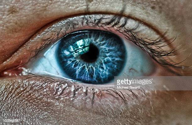 eye spy - michael siward stock pictures, royalty-free photos & images