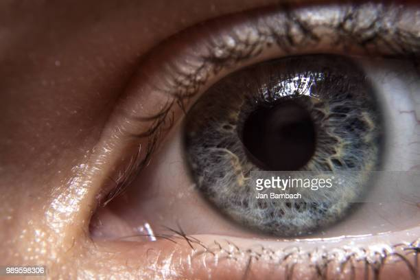 eye to eye - bloodshot stock pictures, royalty-free photos & images