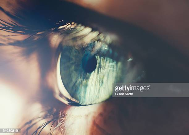 eye with reflect. - nahaufnahme stock-fotos und bilder