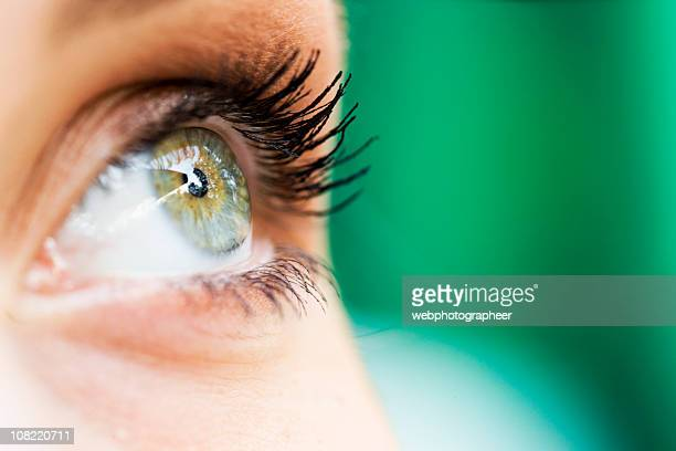 eye xxl - sensory perception stock pictures, royalty-free photos & images