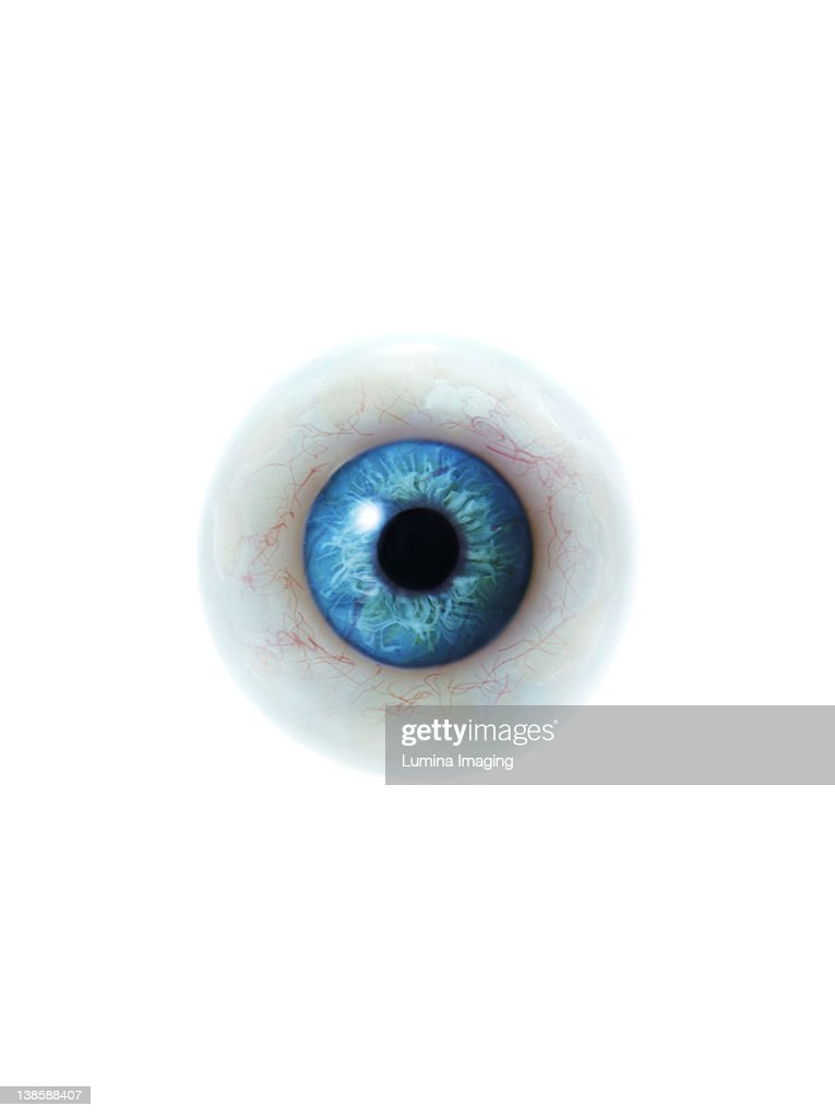 Eyeball : Foto de stock