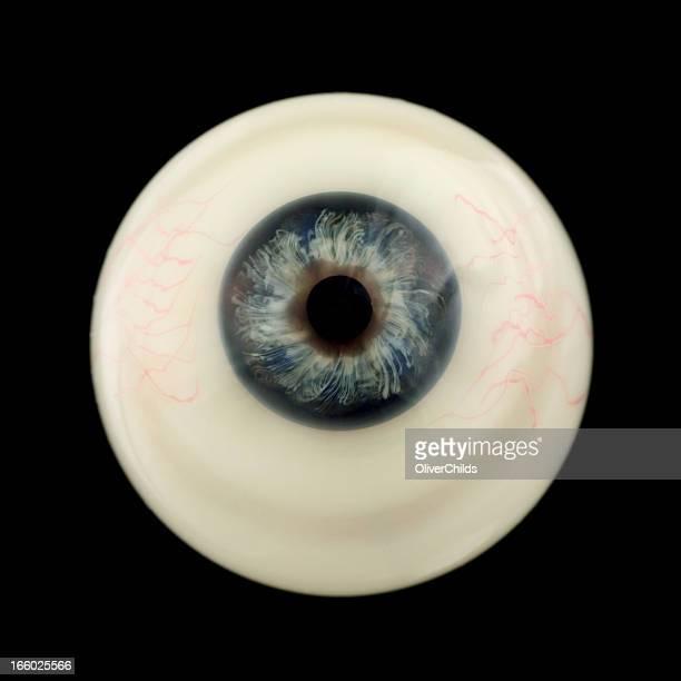 Eyeball.