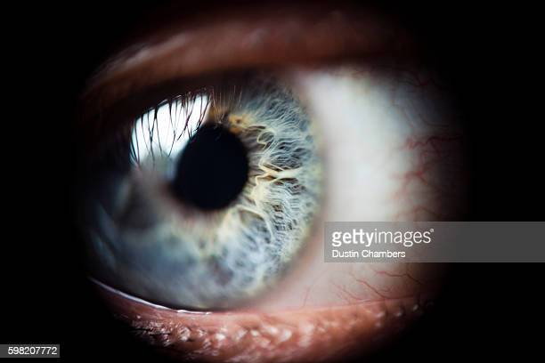 eyeball - extreme close up stock pictures, royalty-free photos & images