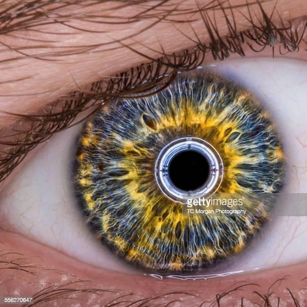 eyeRobot v2.1.3