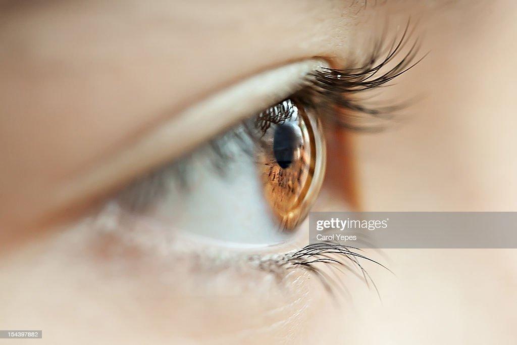 eyes and lashes : Stock Photo