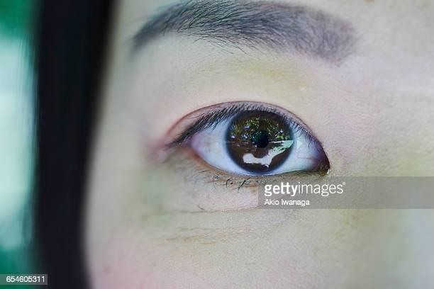 eyes stare - akio iwanaga ストックフォトと画像